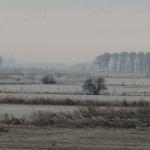 Winterzicht, 50 x100 cm, prijs 575 euro